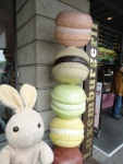 The biggest macaroons I've ever seen!