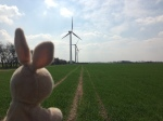 Lots of Windmills in Denmark too.