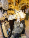 So apparently boars are... plentiful here in Italy... and delicious? I didn't want to eat her though, she was too cute ;)