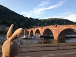 Heidelberg was fun to walk around.