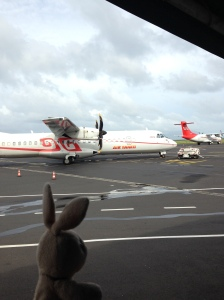 This is the little plane I took over from the big island (Tahiti) to Bora Bora