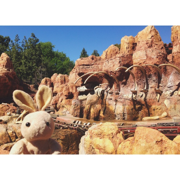 One of my favorite rides at the park - the wildest ride in the wilderness! (Thundermountain Railroad, of course)
