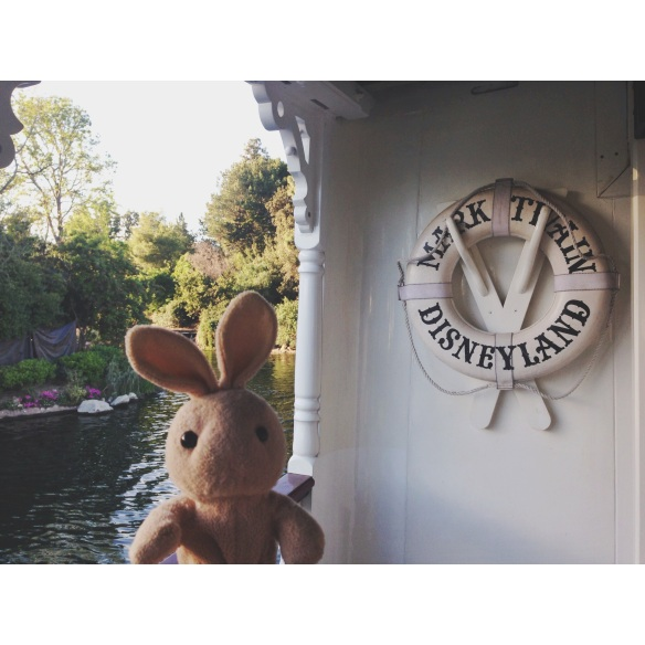 Took my first ride on the Mark Twain  -  I saw lots of wild animals.